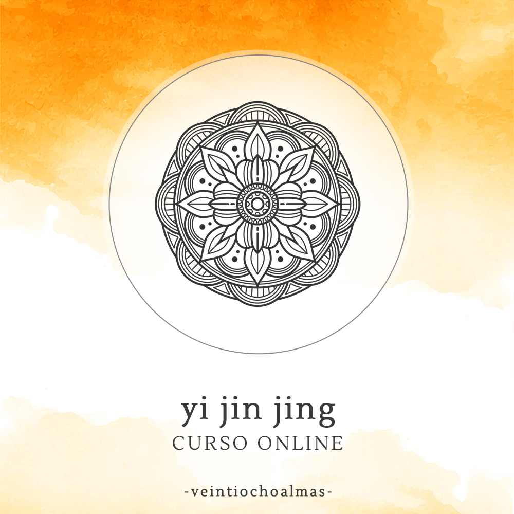 co_yijinjing